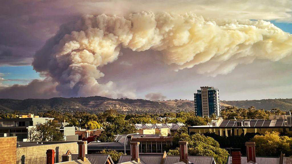 How to support the Adelaide Hills bushfires