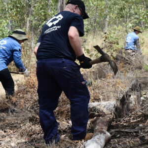 dra bushfire recovery
