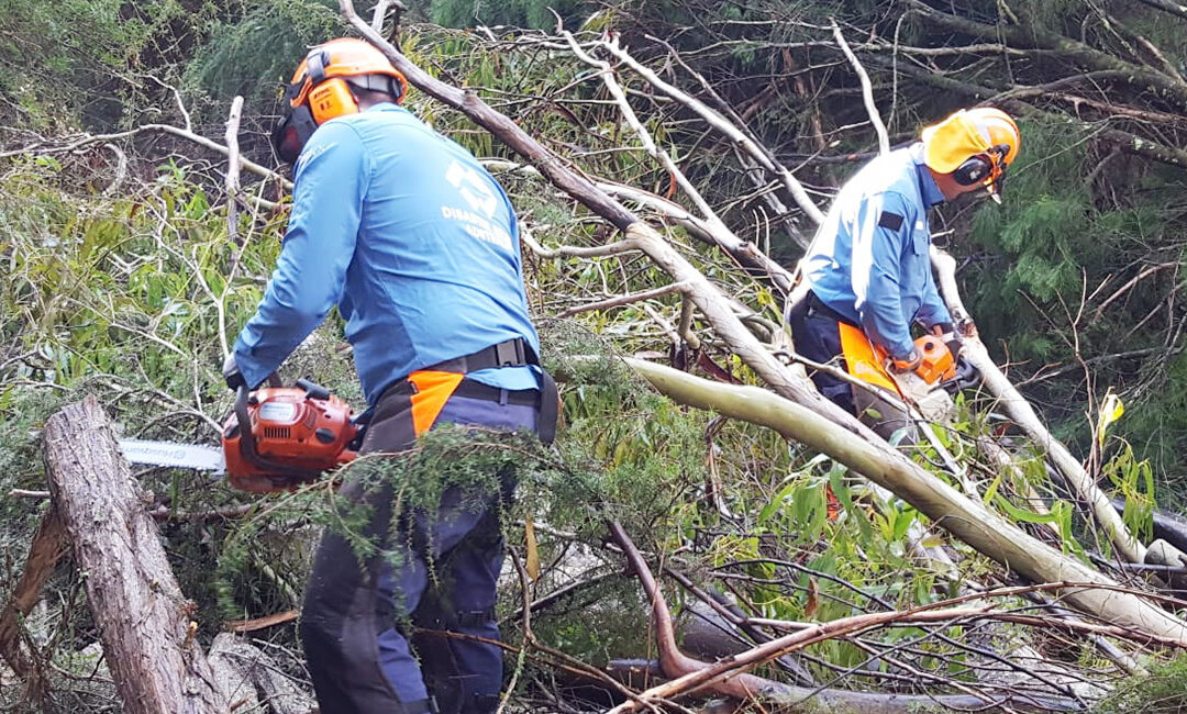Melbourne Volunteers Out of Lockdown to Aid Devastated Dandenong