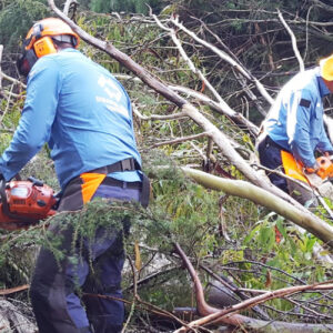 extreme weather recovery victoria