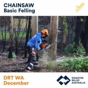 Chainsaw Basic Felling DRT WA 21