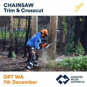 Chainsaw Trim & Crosscut DRT WA 13